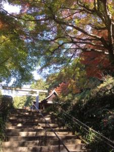 日向大神宮への石段です