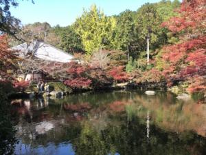 醍醐寺の池と紅葉