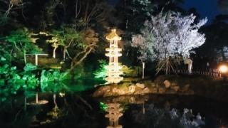 ライトアップされた「兼六園」幻想的な空間に酔いしれる/石川