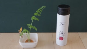 水筒と並べて長さを比較