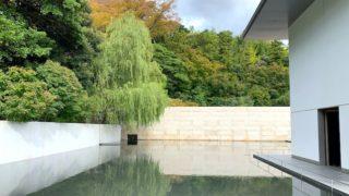 水面を見つめてゆったり流れる静かな時間「鈴木大拙館」