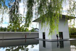 柳の下から水鏡の庭を一望