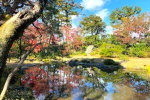 水面にうつる紅葉