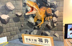 恐竜のディスプレイ