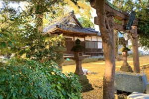 秋の布市神社はイチョウが綺麗