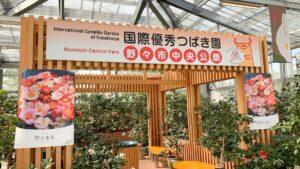 国際つばき園に認定された野々市中央公園