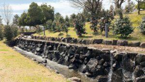 プチ滝と椿