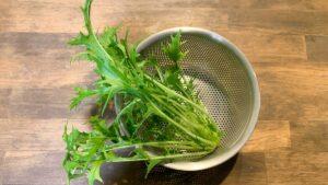収穫したサラダ水菜