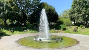 野々市の経塚公園(泉の広場)